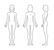 Free download of female. Body clipart plain