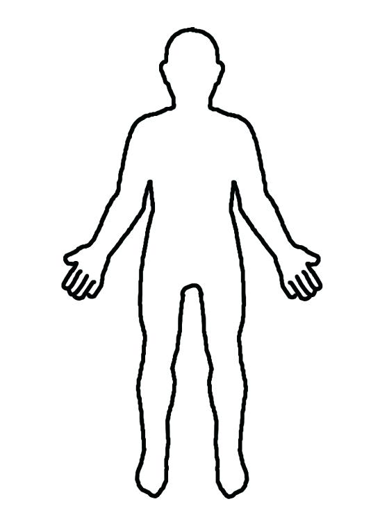 Body clipart plain. Human drawing outline at