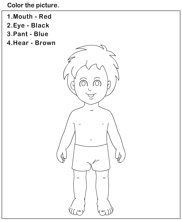 Body clipart preschool. Science worksheets parts