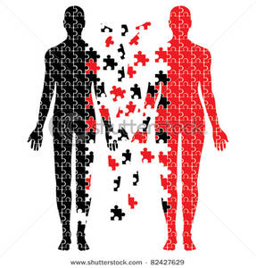 Two bodies made out. Body clipart puzzle