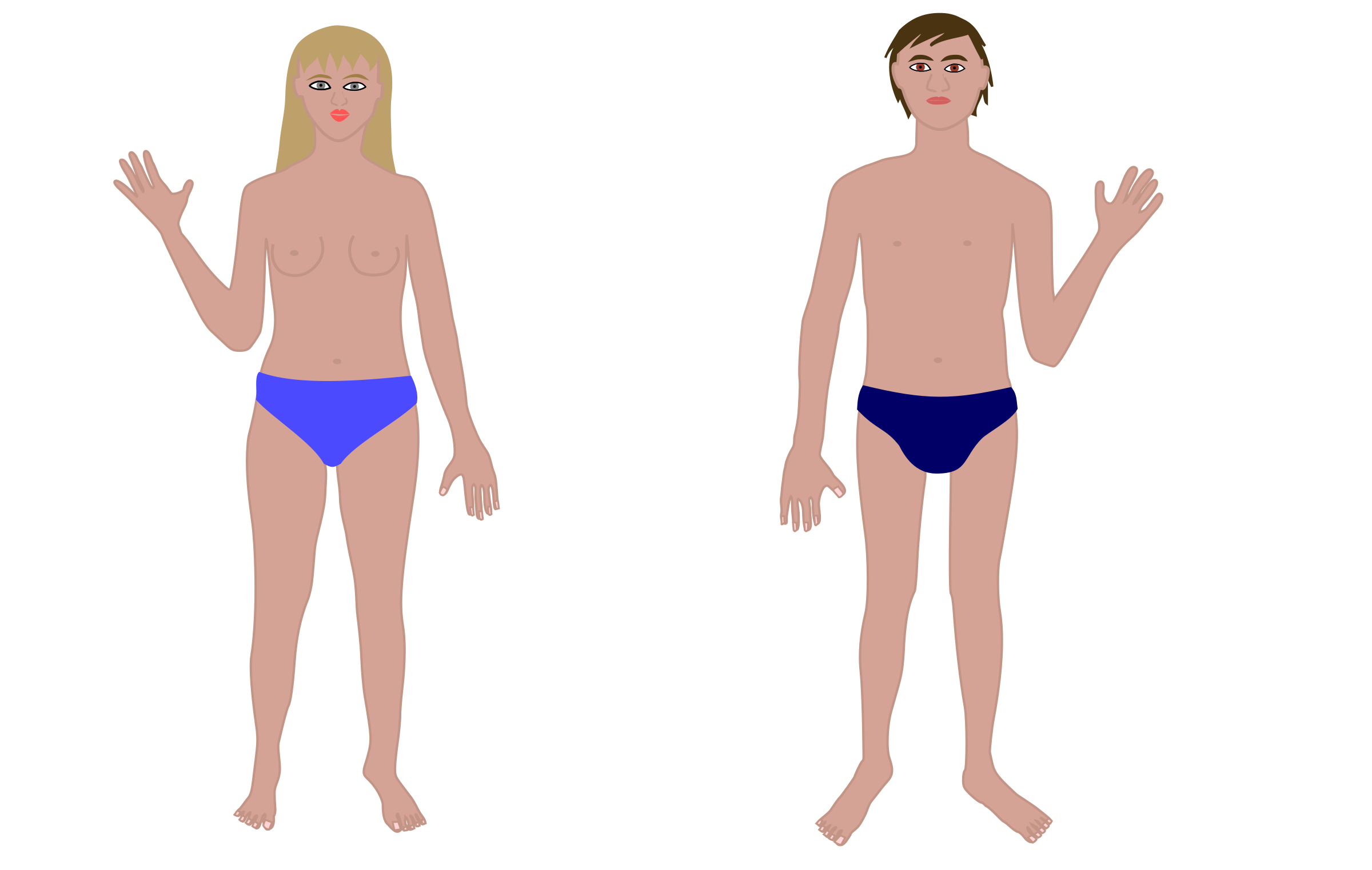 Human man and woman. Body clipart swimsuit