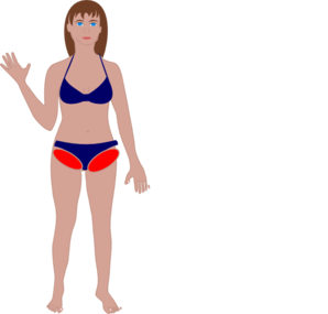 Human clip art at. Body clipart swimsuit