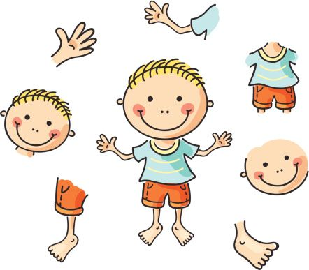 Body clipart toddler. Pictures of parts clipartfest