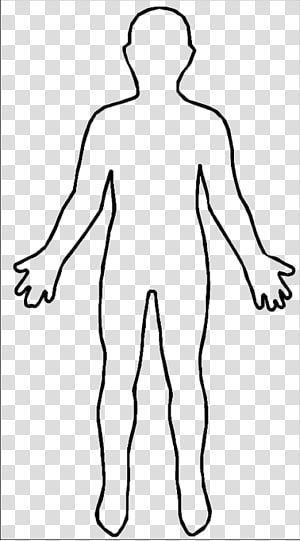 Human female shape outline. Body clipart transparent
