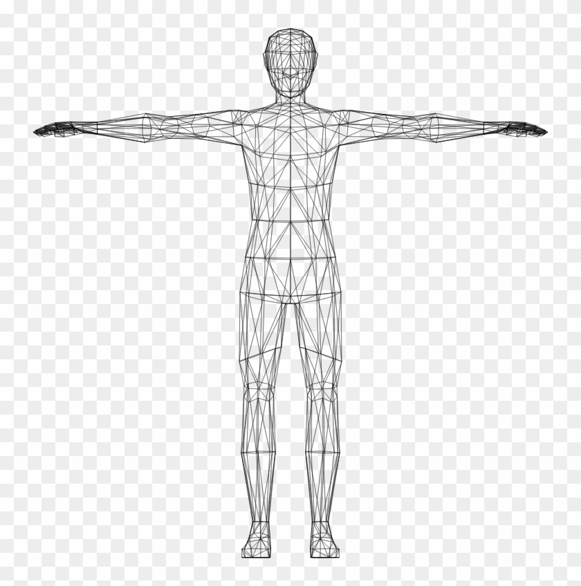 Medium image human hd. Body clipart transparent