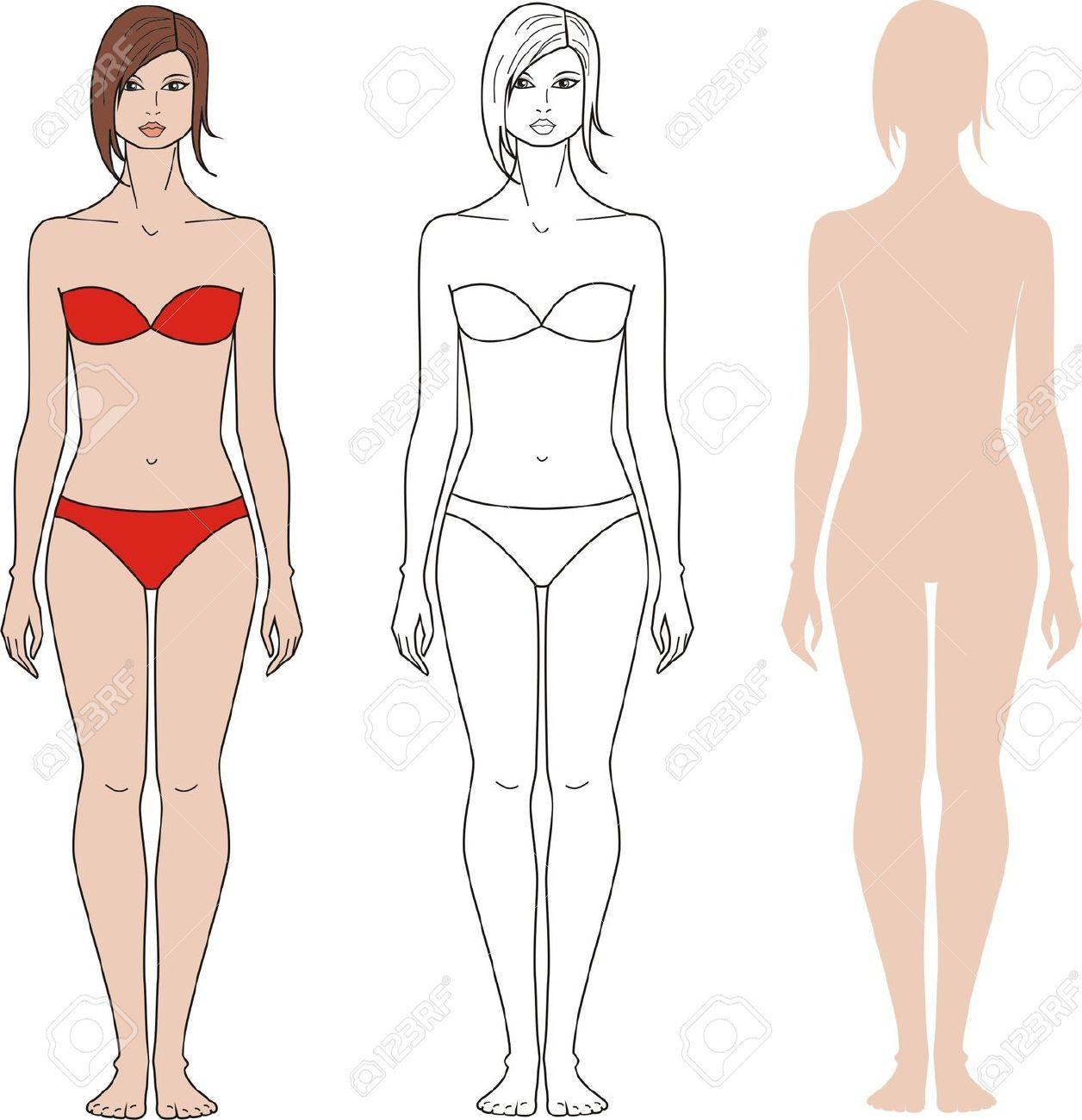 Body clipart woman. Details of women unisex