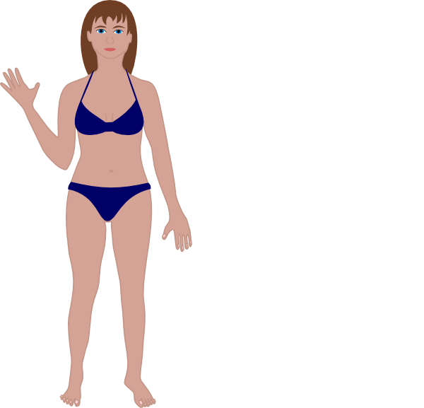 Female clip art at. Human clipart blank body