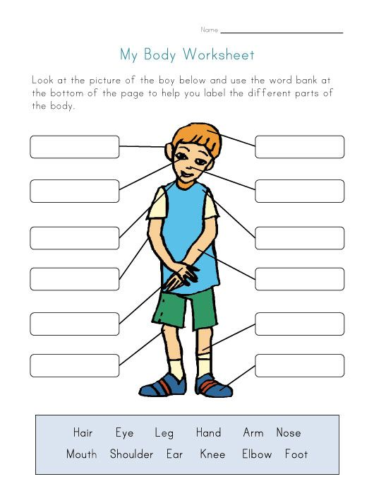 Body clipart worksheet. Naming parts of the