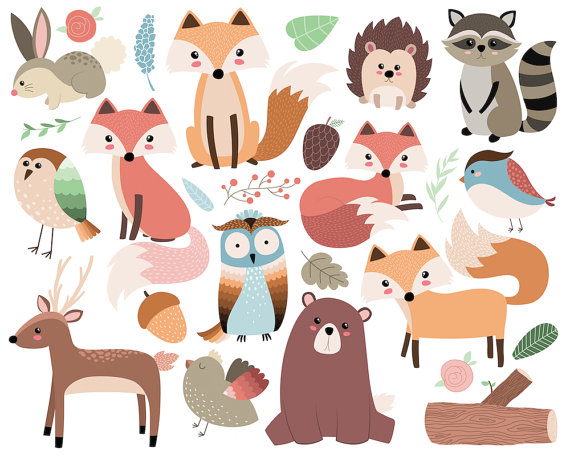 Woodland forest animals clip. Boho clipart animal