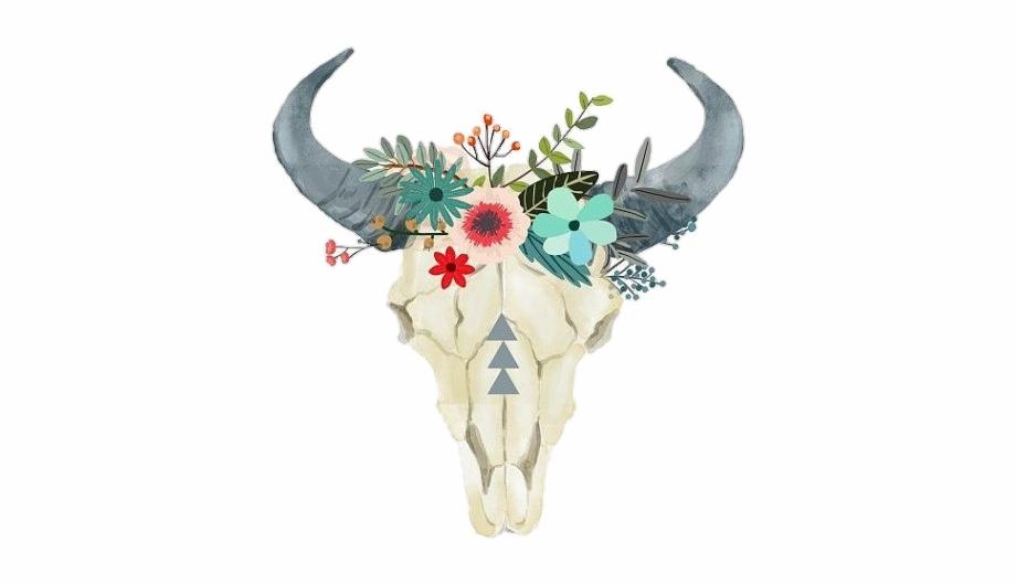 Boho clipart bull skull. Toro skeleton pngstickers png