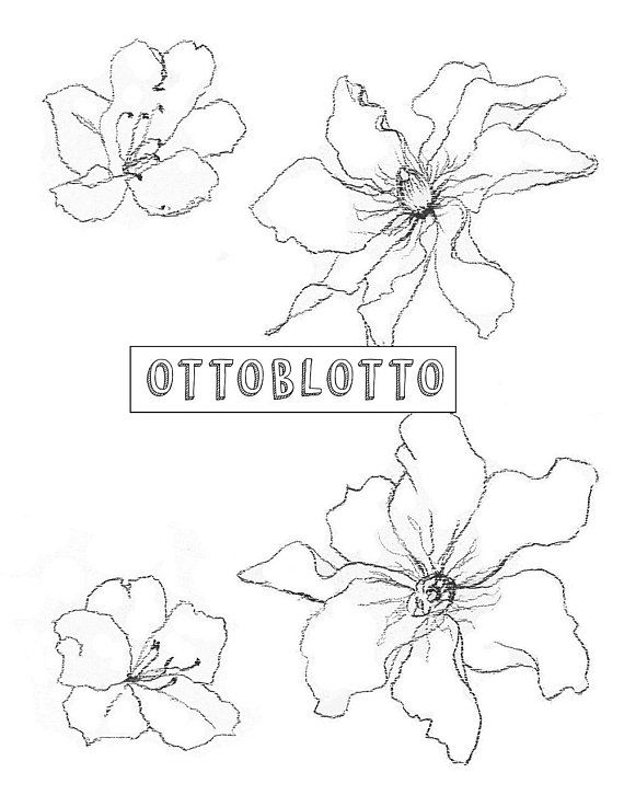 Sketched flowers hand drawn. Boho clipart drawing