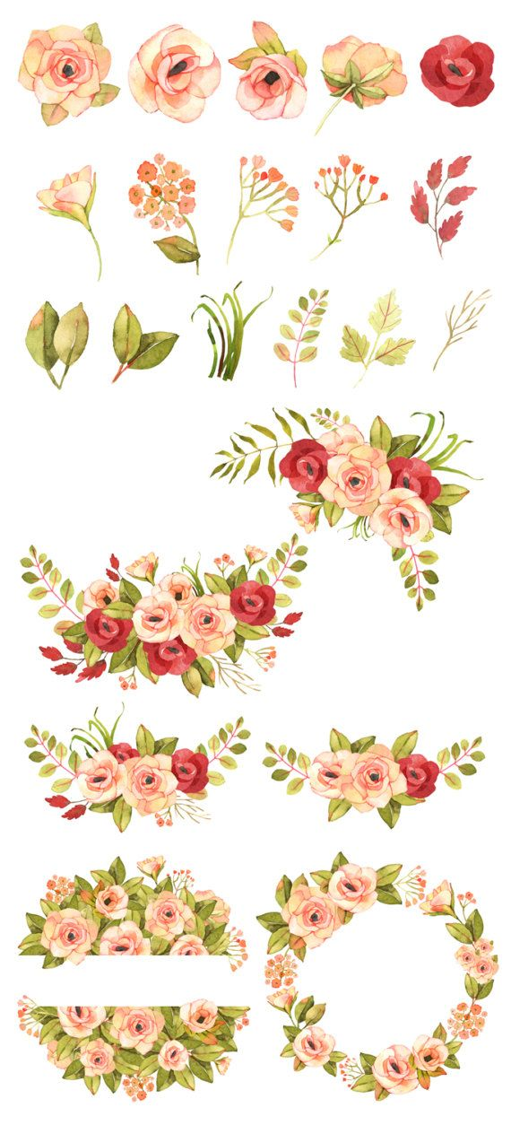 Boho clipart flower. Floral roses watercolor pink