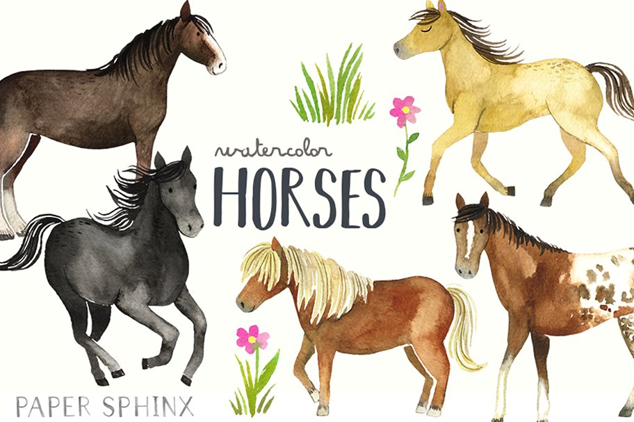 Boho clipart horse. Papersphinx creative market watercolor