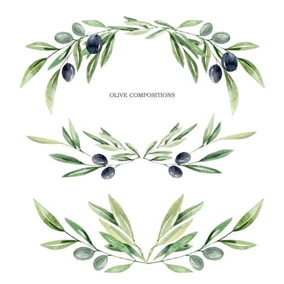 Watercolor olive branch leaves. Boho clipart leaf