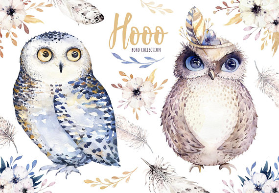 Boho clipart owl. Hand drawn watercolor owls