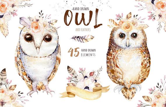 Animal clipart boho. Hand drawn watercolor owls