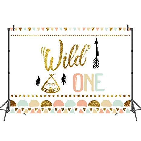 Boho clipart wild one. Mehofoto bohemian birthday backdrop