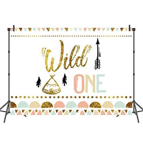 Boho clipart wild one. Mehofoto bohemian birthday backdrop