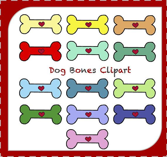 Dog bones animals sale. Bone clipart animal bone