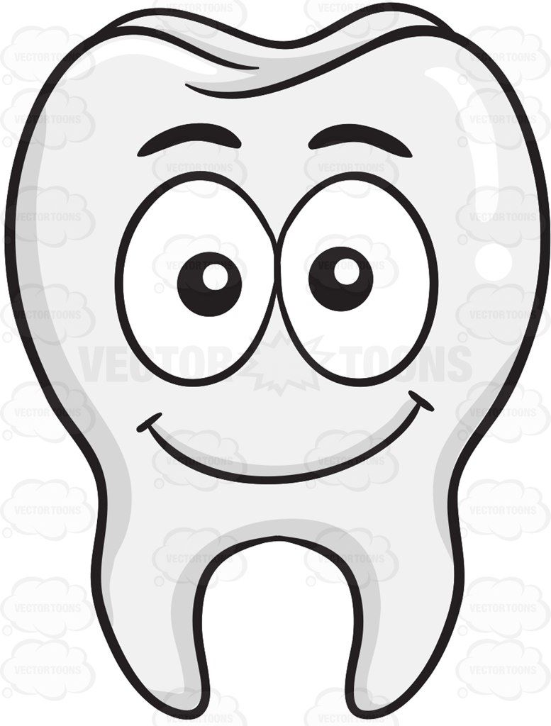 Tooth clipart calcium. Smiling anatomicalstructure bodilystructure