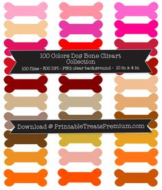 Bone clipart colorful. Pin by printabletreats com