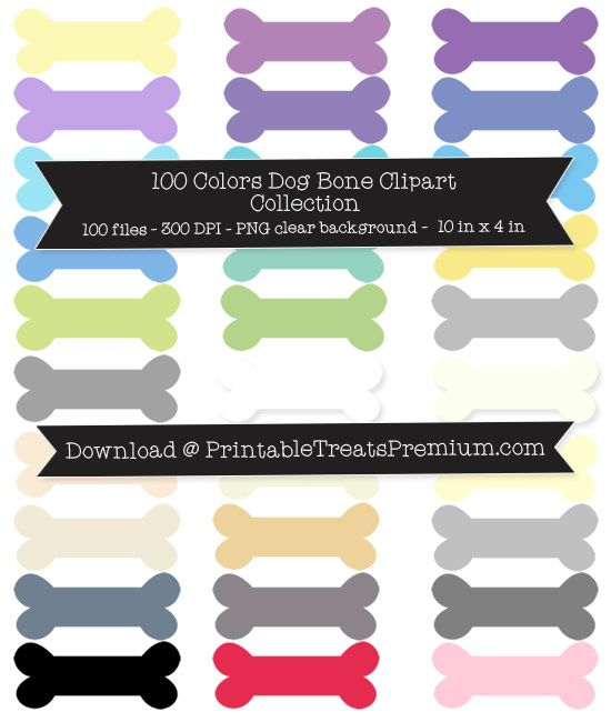 Bone clipart colorful.  colors dog collection