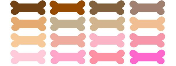 colors dog collection. Bone clipart colorful