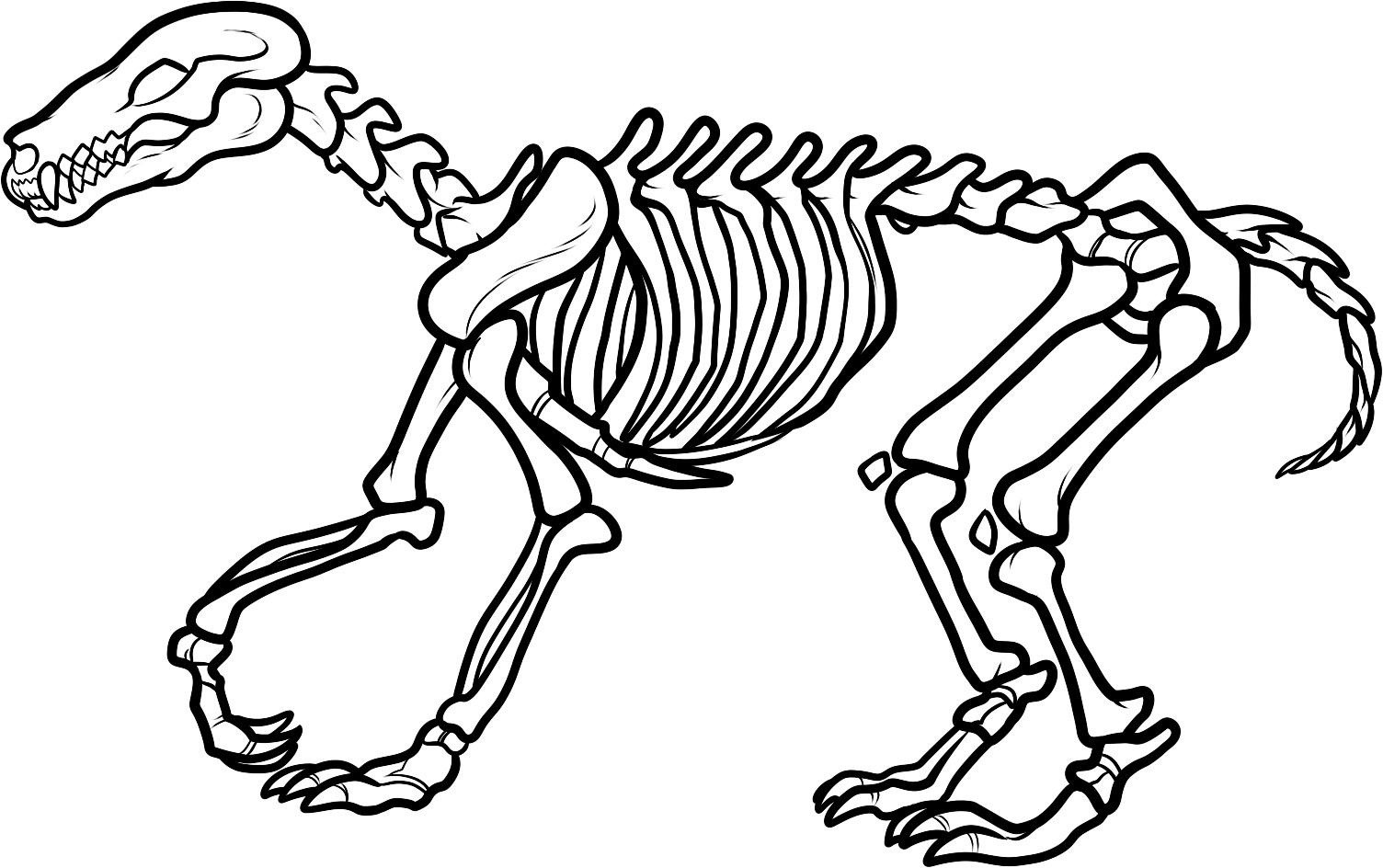 Bone clipart coloring page. Dinosaur bones pages and
