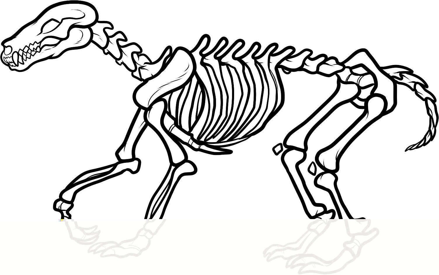 Dinosaur bones pages and. Bone clipart coloring page
