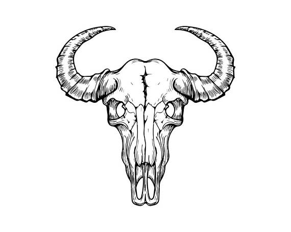 Bone clipart cow. Skull animal head bull