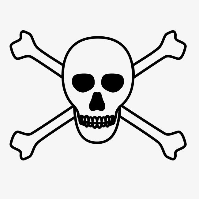 Bones skull head png. Bone clipart cross