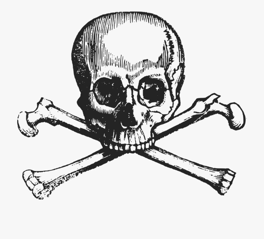 Skull and crossbones human. Bone clipart cross
