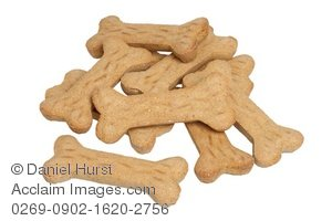 Bone clipart dog biscuit. Treats images and stock