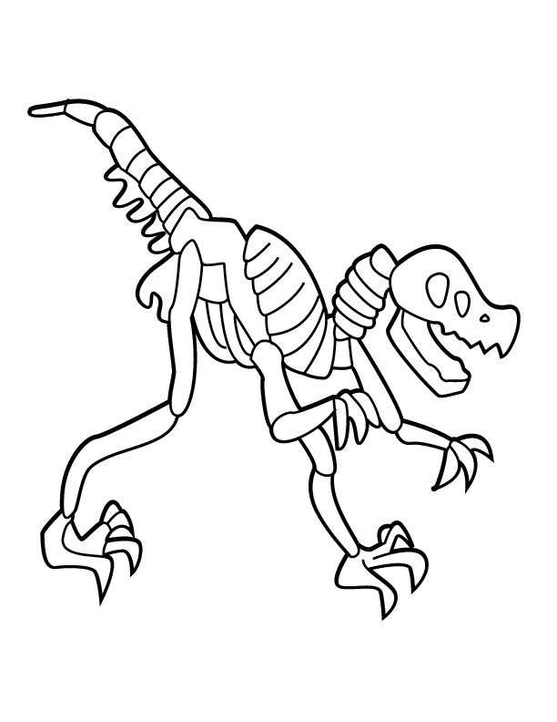 Bones skeleton download. Bone clipart simple