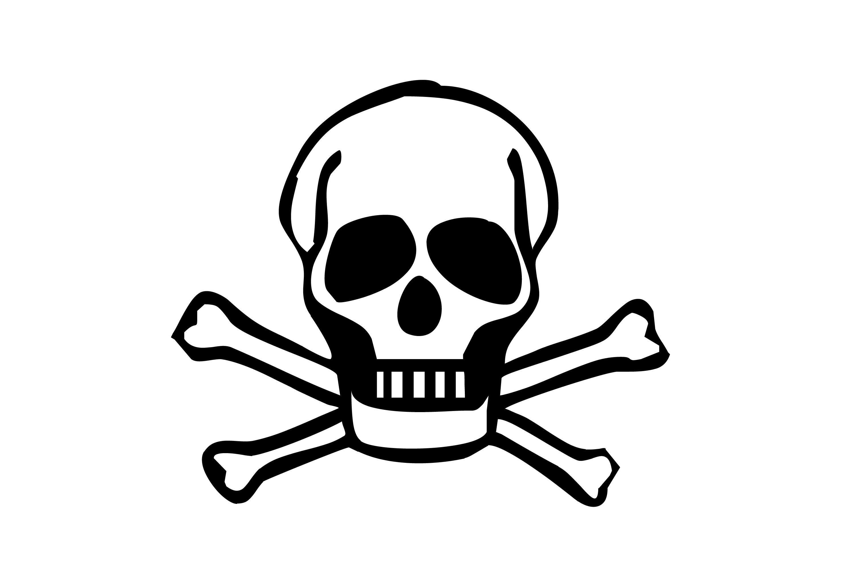 Bone clipart skull. Bones and skulls dromfgc