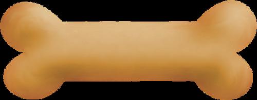 Bone clipart transparent background. Png