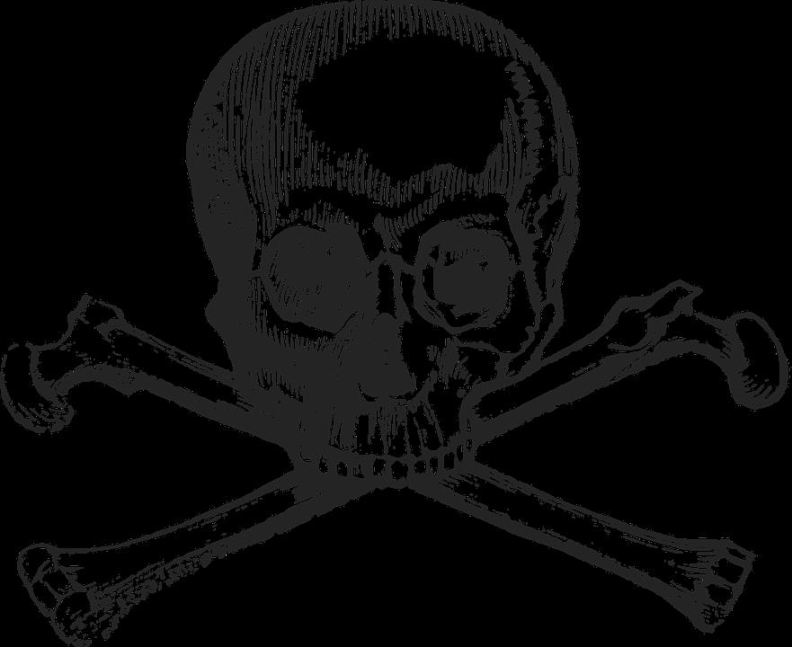 Drawn bones free on. Bone clipart transparent background