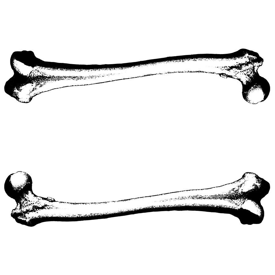 Dog clip art library. Bone clipart vector