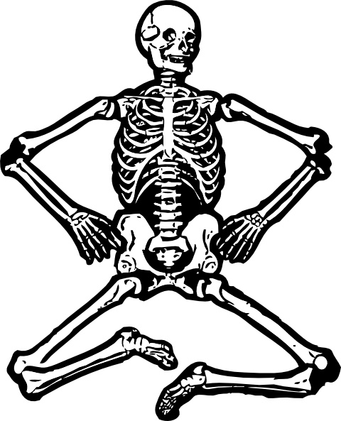 Clipart skeleton. Human clip art free