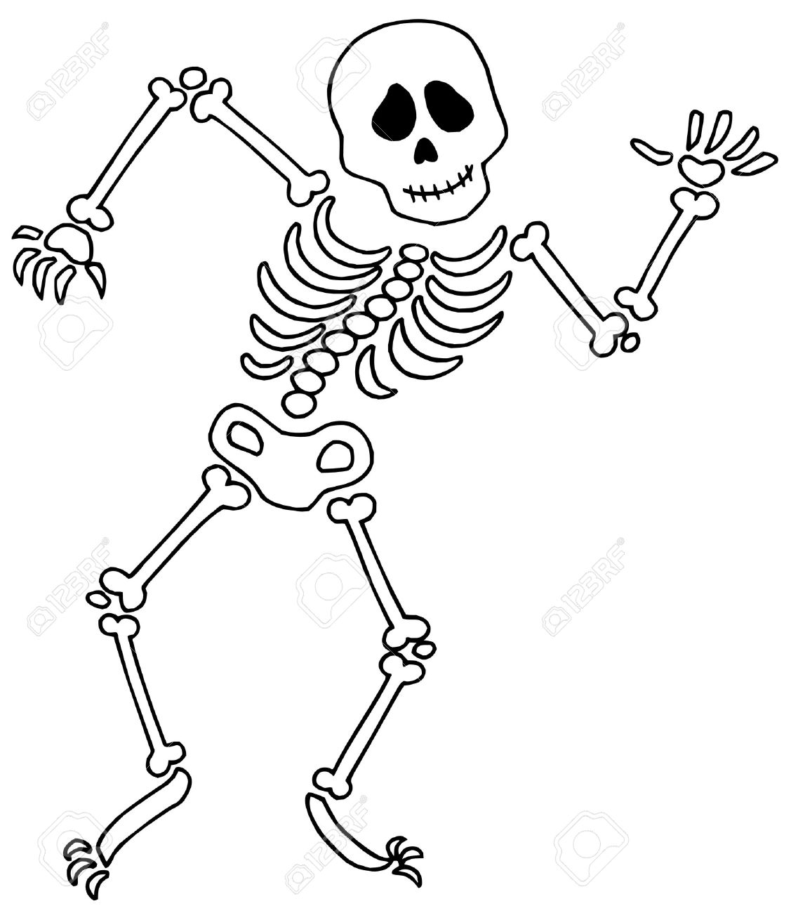 Bones . Skeleton clipart