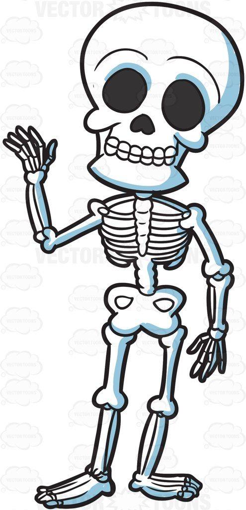 Bones clipart animated. A friendly skeleton cartoon