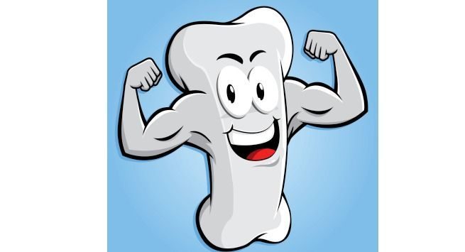 Free bone stong download. Tooth clipart calcium