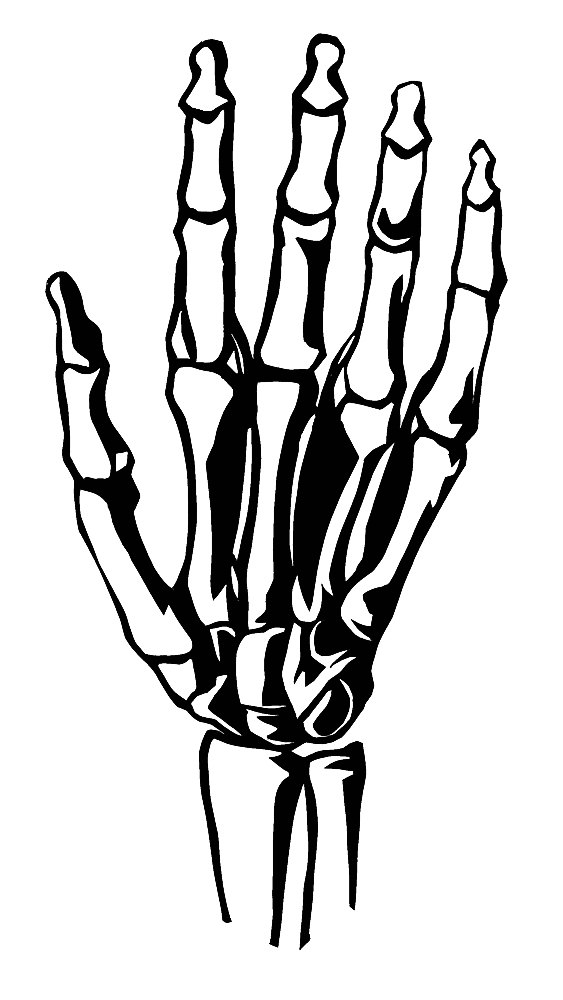 Bones clipart drawn. Hand drawing at getdrawings