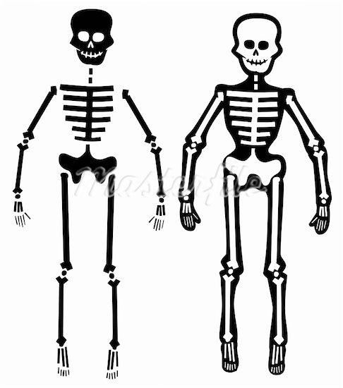 Skeleton pencil and in. Bones clipart simple