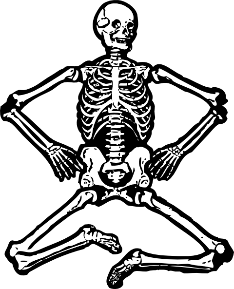 Human clip art at. Bones clipart skeleton