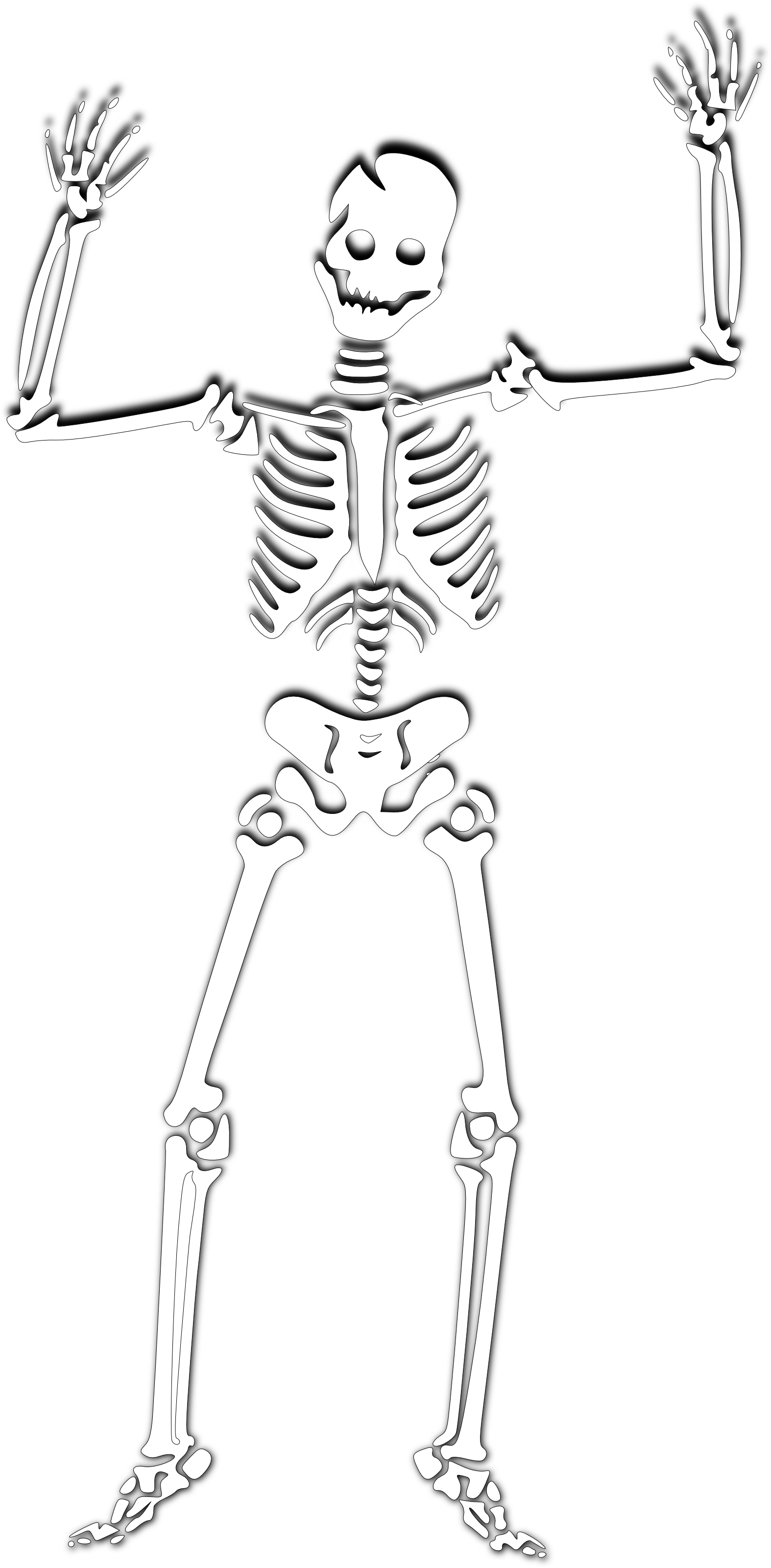 Bones clipart transparent background.  collection of skeleton
