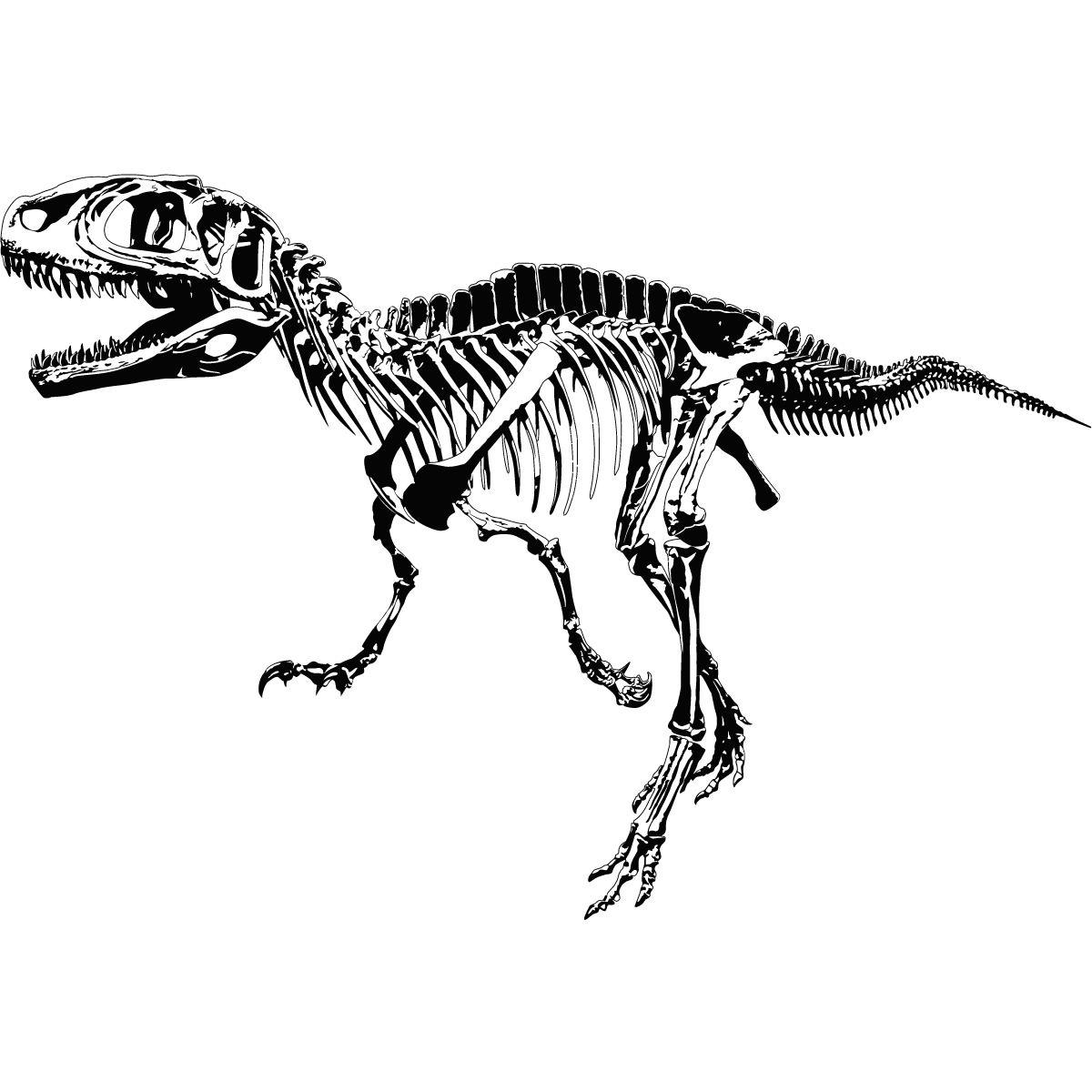 Bones clipart trex. T rex skeleton dinosaurs