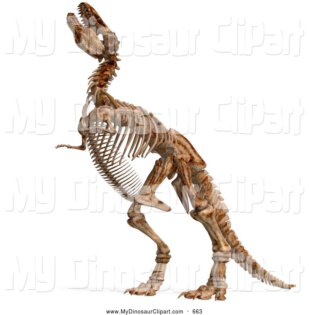 Bones clipart trex. Dinosaur jkfloodrelief org of