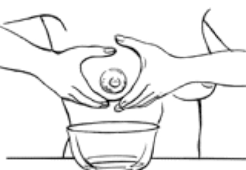 Expressing and storing milk. Boobs clipart breast pump