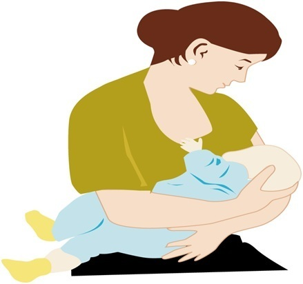 Myths and facts . Boobs clipart mother breastfeeding baby